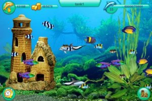 Dolphin Play iPhone Review
